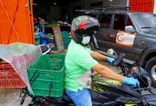 Photo of Los villavicenses podrán recibir en la puerta de sus casas productos traídos directamente del campo