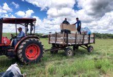 Photo of Cerca de 3 mil indígenas en 5 municipios fueron beneficiados con proyecto de seguridad alimentaria