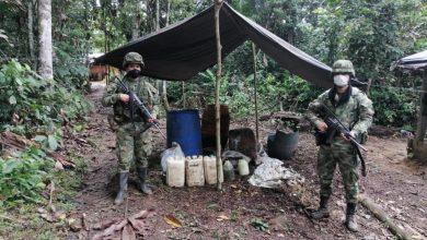 Photo of Ubicados seis laboratorios para el procesamiento de pasta de base de coca