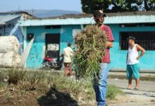 Photo of Embellecimiento del entorno y oportunidades de empleo  llegan al barrio Santa Fe