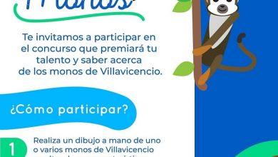 Photo of Concurso de dibujo 'Dilo con nuestros Monos'  amplió el plazo de participación