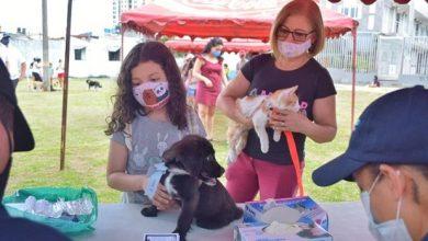 Photo of Las mascotas también hicieron parte de la Semana de la Movilidad Sostenible de Villavicencio