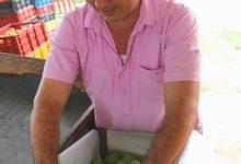 Photo of Listo el plan que le permitirá a pequeños y medianos productores mejorar su calidad de vida