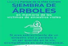 Photo of Reforestación en memoria de siniestros viales  se realizará frente al Parque de la Vida