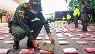 Photo of Incautación de estupefacientes permite sacar de las calles miles de dosis destinadas al microtráfico