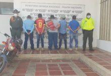 Photo of Asegurados presuntos integrantes de 'Los Orejanos' por supuesto hurto de ganado en Casanare
